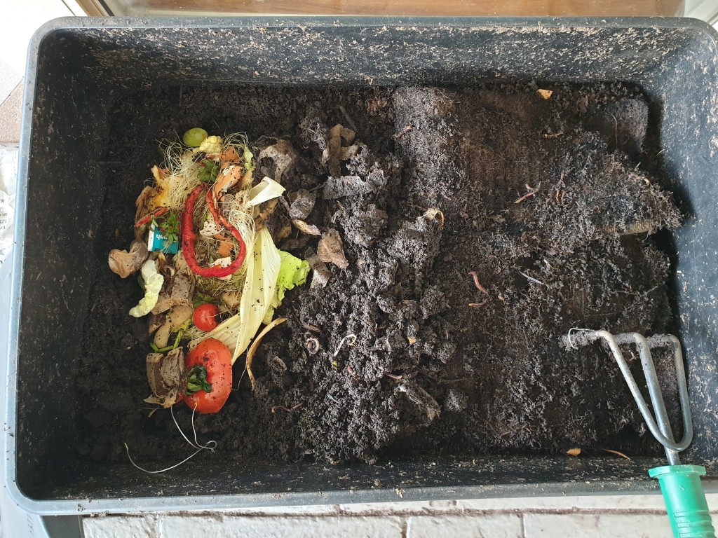 Caring for your worm farm.  Feed you worm with enough food scraps to cover 1/3 of the surface of the worm farm
