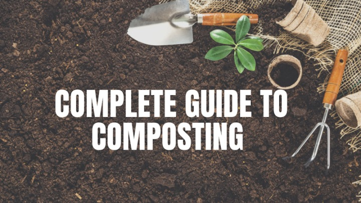 A Complete Guide to Composting and WormFarms