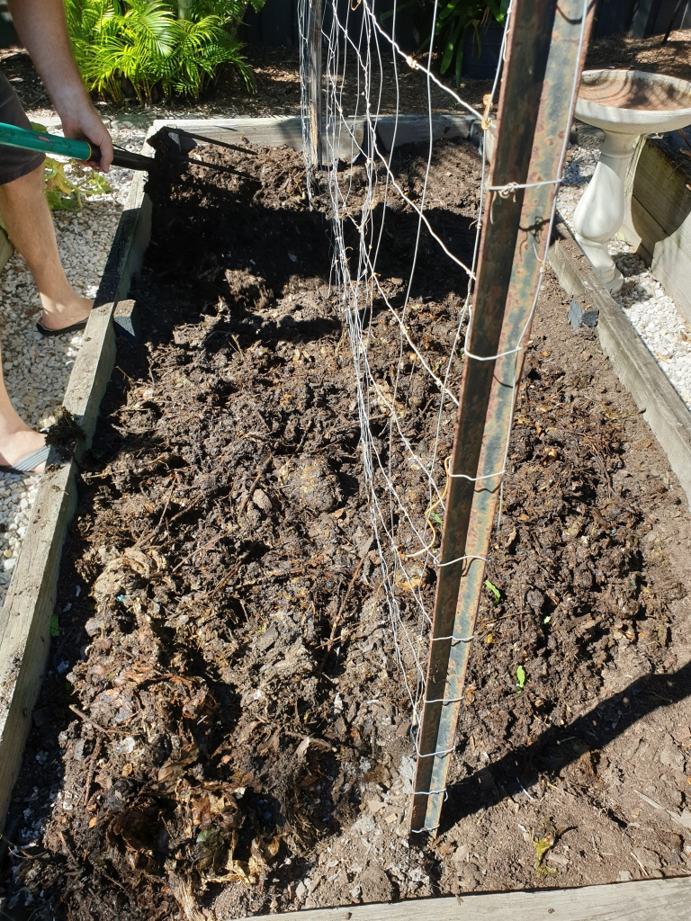 Steps to starting a garden from scratch.  Mix the compost, soil and cow manure with a garden fork