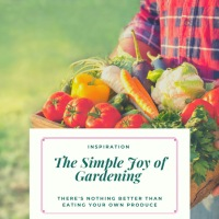The Simple Joy of Gardening